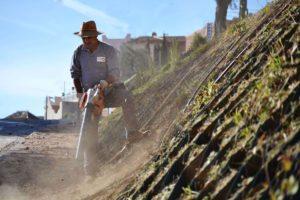mantenimiento-de-comunidades-jardines