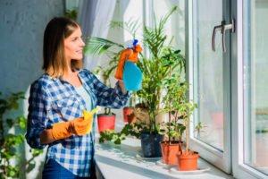 limpieza de cristales y ventanas